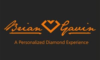 Brian Gavin logo