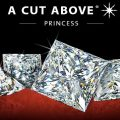 A Cut Above Princess